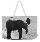 African Elephant Calf Weekender Tote Bag