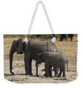 African Elephants Mother And Baby Weekender Tote Bag