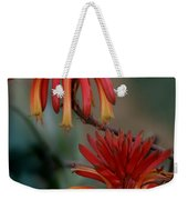 African Fire Lily Weekender Tote Bag