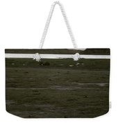 African Lake Weekender Tote Bag