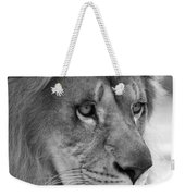 African Lion #8 Black And White Weekender Tote Bag
