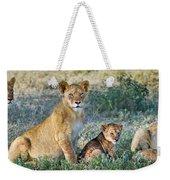 African Lion Panthera Leo Family Weekender Tote Bag