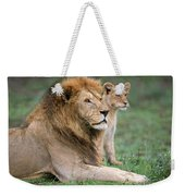 African Lion Panthera Leo With Its Cub Weekender Tote Bag
