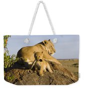 African Lion With Mother's Tail Weekender Tote Bag by Suzi Eszterhas