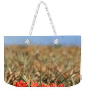 African Tulip Blossom Over Pineapple Field Aloha Makawao Weekender Tote Bag