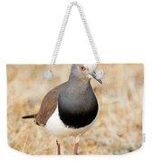 African Wattled Lapwing Vanellus Weekender Tote Bag