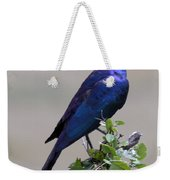 African White Eye Starling Weekender Tote Bag