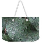 After The Rain 4 Weekender Tote Bag