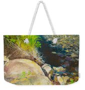 Afternoon Beside The Lane Cove River Weekender Tote Bag