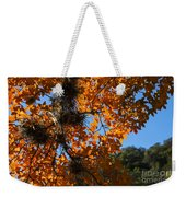 Afternoon Light On Maple Leaves Weekender Tote Bag