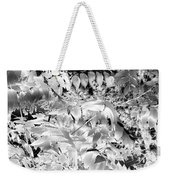 Afternoon Sunlight With Stars Weekender Tote Bag