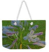 Agapanthus Dawn Weekender Tote Bag