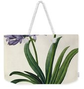 Agapanthus Umbrellatus Weekender Tote Bag by Pierre Redoute