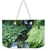 Akaka Falls Stream Weekender Tote Bag