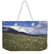 Alaska Cotton Eriophorum Scheuchzeri Weekender Tote Bag