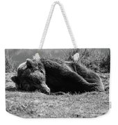 Alaska Grizzly - Do Not Disturb Grayscale Weekender Tote Bag