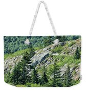 Alaskan Wilderness Weekender Tote Bag