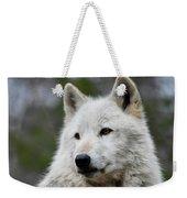 Alawa The Wolf Rests Weekender Tote Bag