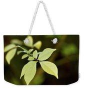 Albino Branch Weekender Tote Bag