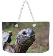 Aldabra Giant Tortoise's Portrait Weekender Tote Bag