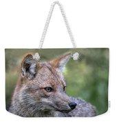 Alert Fox  Weekender Tote Bag