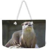 Alert Otter Amblonyx Cinerea Weekender Tote Bag
