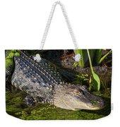 Algae Gator 2 Weekender Tote Bag