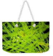 Algae Spirogyra Sp., Lm Weekender Tote Bag
