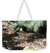 All Clear - Bird Looking Under Legs Weekender Tote Bag