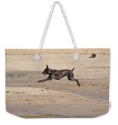 All Four Off The Ground Weekender Tote Bag