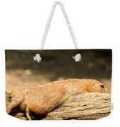 All Stretched Out Weekender Tote Bag