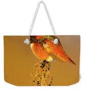 Allen's Hummingbird II Weekender Tote Bag