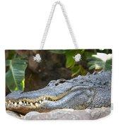 Alligator 1 Weekender Tote Bag