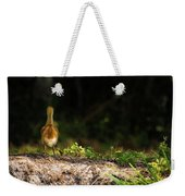 Alone And Searching Weekender Tote Bag
