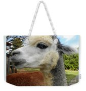 Alpaca Blue Weekender Tote Bag