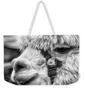 Alpaca Close Weekender Tote Bag