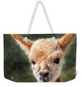 Alpaca Weekender Tote Bag