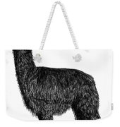 Alpaca Fine Art Weekender Tote Bag