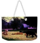 Alpacan Twilight Weekender Tote Bag