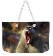 Alpha Baboon Yawning, Kruger Park Weekender Tote Bag