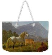 Alpine Landscape Weekender Tote Bag