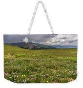 Alpine Meadow Before Mount Guyot Weekender Tote Bag