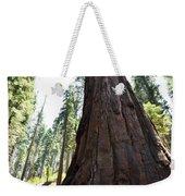 Alta Vista Giant Sequoia Weekender Tote Bag