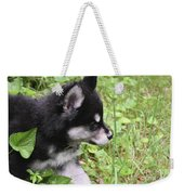 Alusky Puppy Tip Toeing Through Green Foliage Weekender Tote Bag