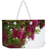 Amaranth Pink Flowering Locust Tree In Spring Rain Weekender Tote Bag
