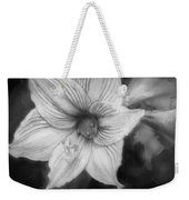 Amaryllis And Tree Frog Painted Bw Weekender Tote Bag