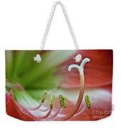 Amaryllis Flower Weekender Tote Bag