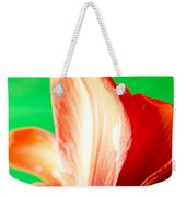 Amaryllis Head Pt Orange Amaryllis Flower On Green Background Weekender Tote Bag