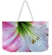 Amaryllis - Lily Weekender Tote Bag