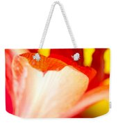 Amaryllis Shadow Abstract Flower With Shadow On Red And Yellow Weekender Tote Bag